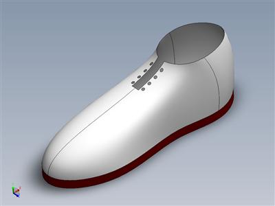 印度品种的鞋